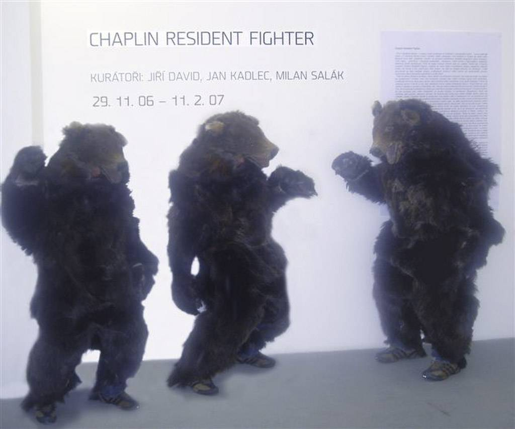 Chaplin resident fighter by Jan Kadlec